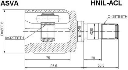 HNIL-ACL
